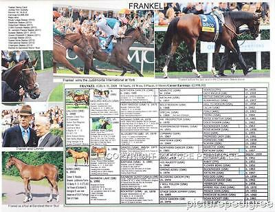 Race Horse the unbeaten FRANKEL  picture pedigree
