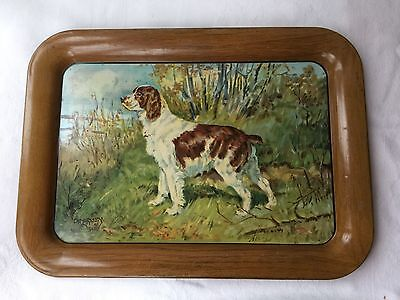Vintage Metal Serving Tray by A.C.Co. Dog Brittany Spaniel by Ole Larsen c.1940
