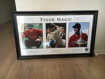 """Tiger Woods framed, """"magic"""" limited edition picture"""