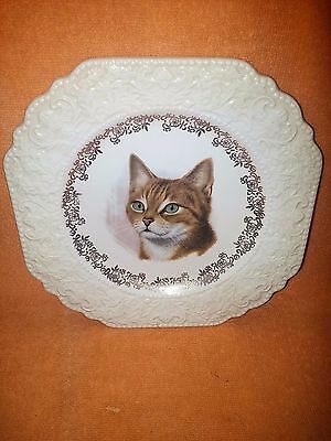 "Cat Plate, Lord Nelson Pottery, England - Beautiful face of a ""Tabby Cat"" - 4/71"