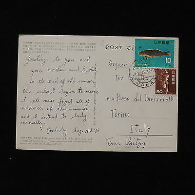 ZS-AB300 JAPAN - Fish, 1966 From Urawa To Turin Italy Postcard