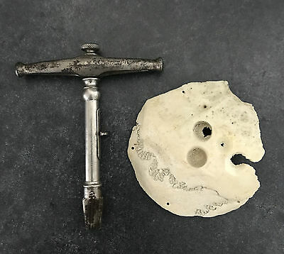 Antique 19th C Trephine and Scull Fragment -  Trepanning Instrument