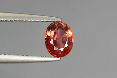 1.500 Cts FULL FIRE 100% NATURAL EARTH MINE RED ZIRCON UNHEATED GEMSTONE ~!!!