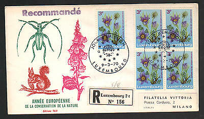 ZS-D919 LUXEMBOURG - Flowers, Fdc To Italy 1970 Cover