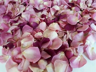 1 liter = 5 cups REAL Rose Petals. Freeze Dried Rose Petals Mix colors