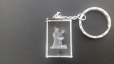 Wizard & spells Crystal Keyring - 3D Lasered Image with chain. Brand new & boxed