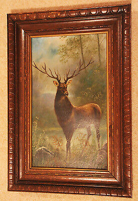 Good size original 19th century Oil on board of a stag by S Sedgwick 2 of 2