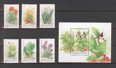 Moldova 1993 Flowers 6 MNH stamps + Block