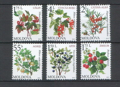 Moldova 2013 Fruiting shrubs 6 MNH stamps