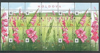 Moldova 2016 WWF Flowers  - Protected Flora: Turkish Marsh Gladiolus 8 Minisheet