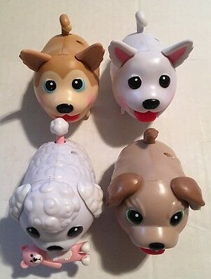 Lot Of 4 Chubby Puppies Walking Dogs Husky Poodle