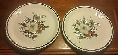 "Town & Country BLUE RIDGE Dinner plate Set of 2, 10 5/8"" Stoneware Oven to table"