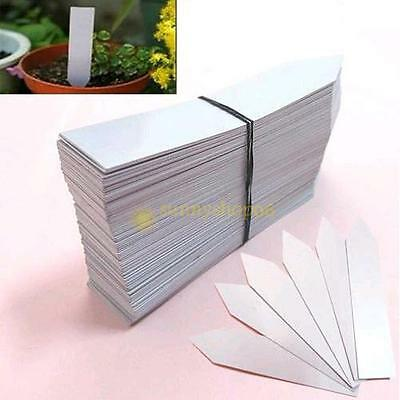 100Pcs 4'' Garden Plant Pot Markers Plastic Stake Tags Nursery Seed Labels PVC