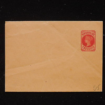 ZS-AA482 NEWFOUNDLAND - Entire, Two Cents, Mint Cover