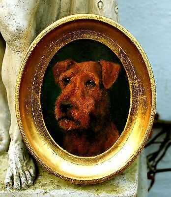 Exquisite Early C20th Edwardian English School Oil Portrait of an Airedale