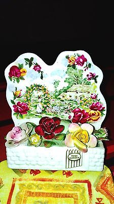 Old Country Roses Royal Albert Rose Garden. Collectable.