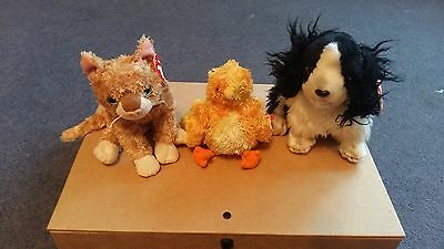 TY Beanie Babies - Cat, Chick, Dog