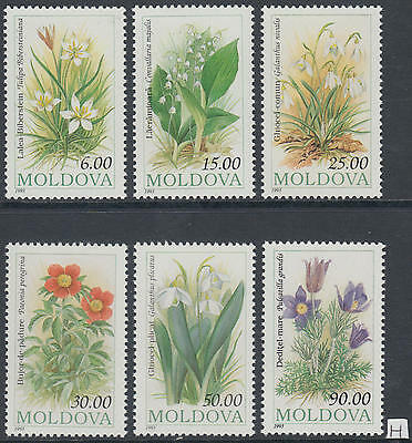 XG-AG820 MOLDOVA - Flowers, 1993 Flora, 6 Values MNH Set