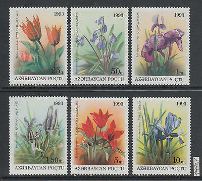 XG-AJ570 AZERBAIJAN - Flowers, 1993 Flora, Nature, 6 Values MNH Set