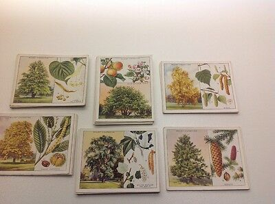 Wills Trees, large set of 40 excellent condition. Cigarette Cards.