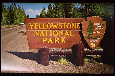 Vintage Assorted Postcards and Photo Books Yellowstone National Park