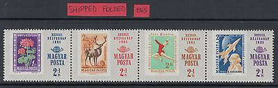XG-D452 HUNGARY - Space, 1965 Flowers, Wild Animals, Stamp On Stamp MNH Set