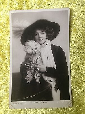 Edwardian Actress MISS LILY ELSIE with Poodle Real Photograph Postcard SIGNED