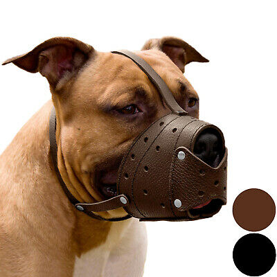 Pit Bull PitBull Terrier Secure Basket Dog Muzzle Genuine Leather Staffordshire