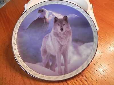 """Collectors Plate"""" United in Spirit"""" From Bradford Exchange"""