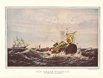 "CURRIER & IVES print of THE WHALE FISHERY ""THE SPERM WHALE""  (1955 reprint)"
