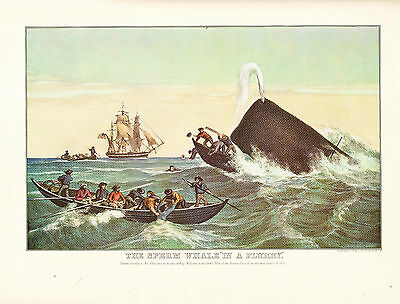 """CURRIER & IVES print of THE SPERM WHALE """"IN A FLURRY""""  (1955 reprint)"""