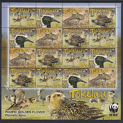XG-U120 TOKELAU ISLANDS - Birds, 2007 Wwf, Pacific Golden Plover MNH Sheet