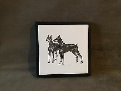 Vintage Two Doberman Pinscher Dogs Dog Pair Ceramic Tile Framed