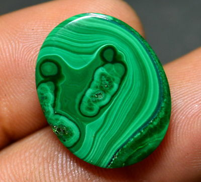 25.45 Cts 100% Natural Malachite/Kidney Cabochon Loose Gemstone For_Ring Size