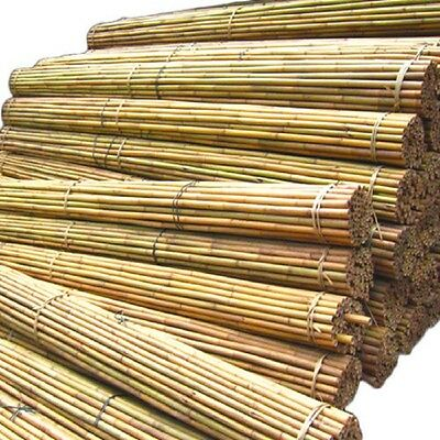 2ft-6ft Professional Bamboo Plant Strong Heavy Duty Support Fencing Garden Canes