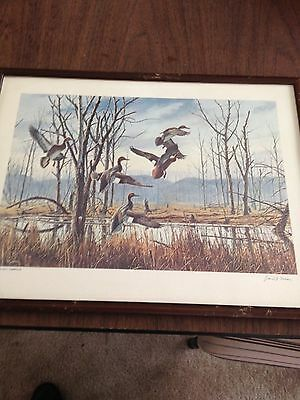 David Maass - Hasty Departure/ruffed Grouse