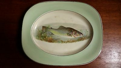 Vintage/Antique Trout plate - Woods Ivory Ware England