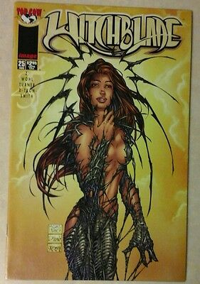 Witchblade #25  (Image)