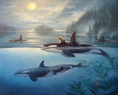 Large Paint By Number Kits S2 40*50CM KID DIY Bunny and Dolphins 8143 AU STOCK