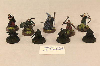 Warhammer Lord of the Rings Fellowship of the Ring