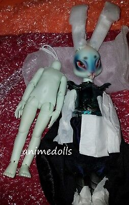 Pipos Doll 28cm Limited Edition of only 2 R.PI Armored Mecy w/ Extra Body MIB