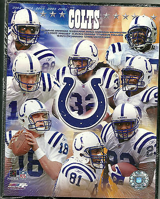 "New 8""X10"" Wooden Plaque Indiannapolis Colts NFL 2003"