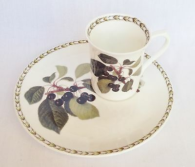 Royal Horticultural Society Hookers Fruit Mug and Sandwich Plate - Queens