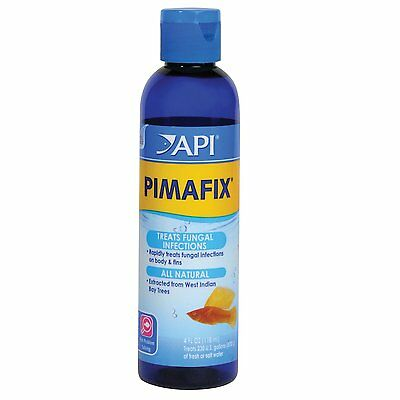 API Pimafix 118ml Anti Bacterial Fungal Treatment Aquarium Fish Infection