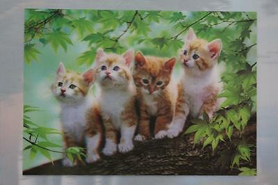 Vintage 3D Three Dimensional Colorful Pictures of Four Cats 14x10
