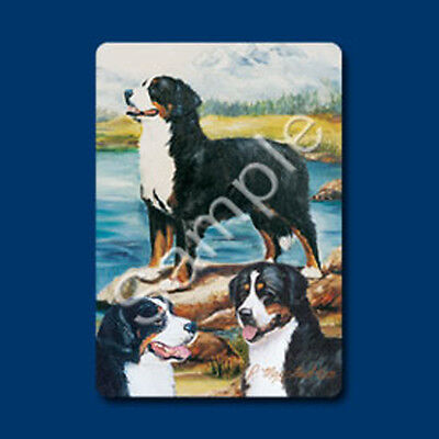 Playing cards: Bernese Mountain Dog Playing Cards Designed by Ruth Maystead (BMD