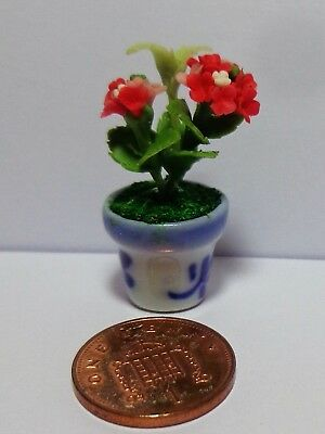 1:12  Red Hydrangea In A Pot  Dolls House Miniature Flowers Accessory
