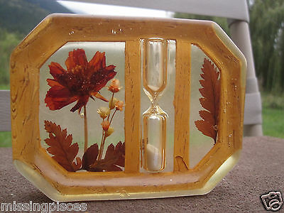 Vintage Retro Resin Lucite Clear Kitchen Tile with Egg Timer Real Flowers