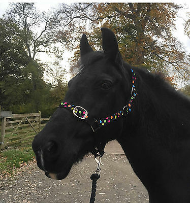 Horse POLKA DOT  Headcollar Halter Unique With Leadrope Full Cob Pony Shetland