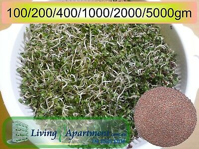 Broccoli Sprout seeds Organic Certified (Sprouts , Sprouting seeds) 0.1-2kg